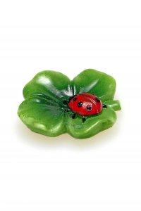 Käfer auf Kleeblatt