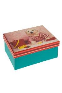 Geschenkbox Hündchen Teddy
