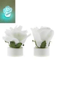 Rosenlicht LED weiß, 2 Stück