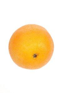 Deko-Frucht Grapefruit
