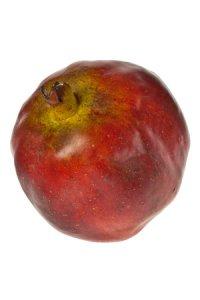 Deko-Frucht Granatapfel