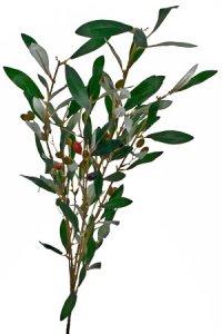 Deko-Zweig Olive
