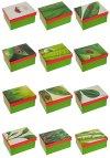 Geschenkboxen 'Grüne Blätter und Marienkäfer' - 12er Set