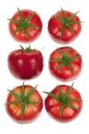 Deko-Gemüse Tomaten- 6er Pack
