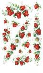 Rubbel-Sticker Leckere Erdbeeren transparent